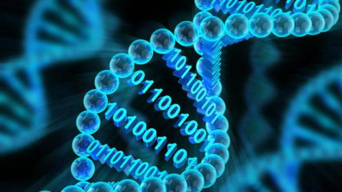 Desarrollan un disco duro con ADN